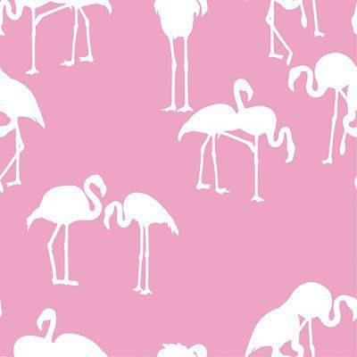 Fabulous Flamingo Wallpaper