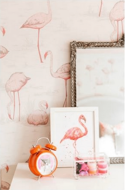 Flamingos: Our Pink Dreams