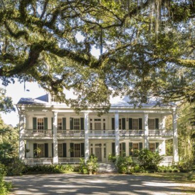 A Peek Inside Hunt Slonem's Historic Homes